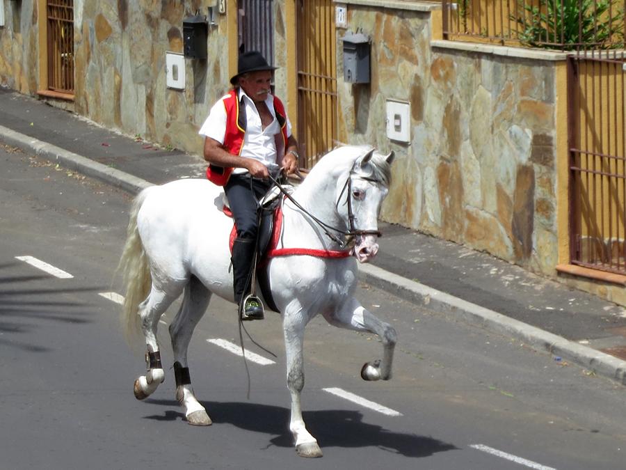 http://kvipic.ru/Fiestas/RomeriaShow/015.jpg