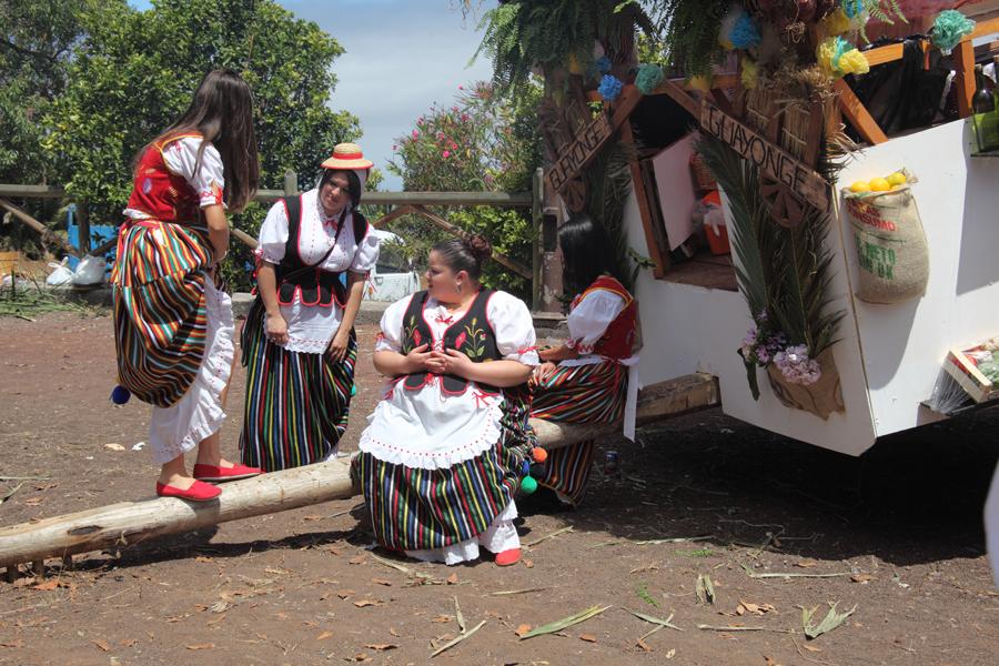 http://kvipic.ru/Fiestas/RomeriaShow/019.jpg