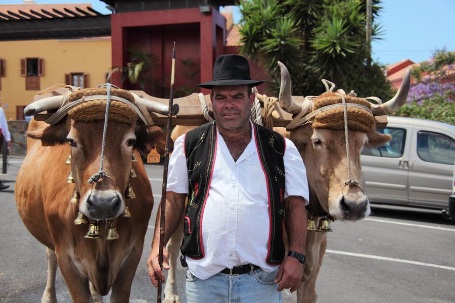 http://kvipic.ru/Fiestas/RomeriaShow/021.jpg