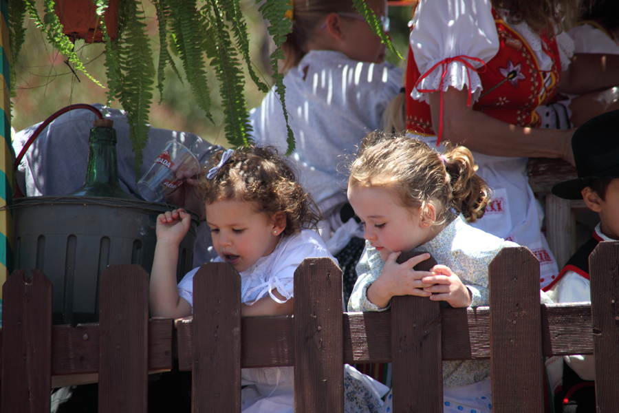 http://kvipic.ru/Fiestas/RomeriaShow/069.jpg