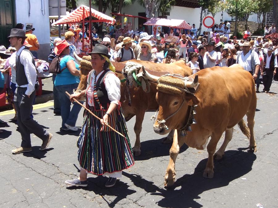 http://kvipic.ru/Fiestas/RomeriaShow/090.jpg