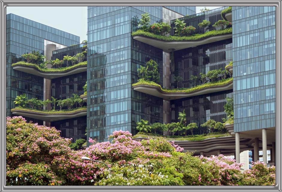 http://kvipic.ru/Singapore/SingaporeShow/046.jpg